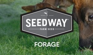 Seedway Forage Product Cover